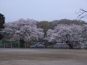 城山町立川尻小学校