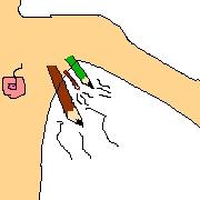 ワキのにおいは鉛筆の芯のにほい