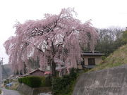 岩江中学校