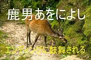 鹿男エンディング曲に鼓舞される