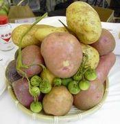 野菜の伝道師♪