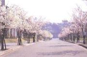 関東学院大学文学部