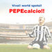 World sports !! PEPEcalcio !!