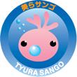 チーム美らサンゴ