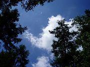 '08高遠キャンプリーダー