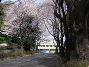 鶴ヶ島市立杉下小学校