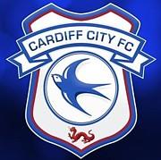 カーディフ シティ Cardiff City