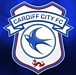 �����ǥ��� ���ƥ� Cardiff City
