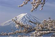 初めての富士山※登山初心者歓迎