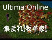 Ultima Online 集まれ!牧羊家!