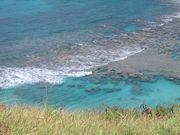 I  love the ocean!!
