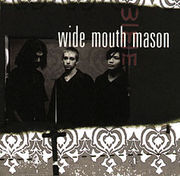 wide mouth mason