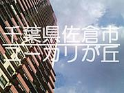 千葉県佐倉市ユーカリが丘