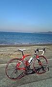 千葉県の自転車乗り