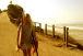 サンディエゴ ミッションビーチ