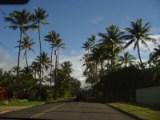ハワイ最高!