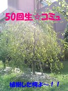 SEIREI♡50回生