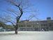那珂川町立岩戸小学校