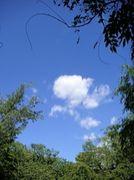 この空を守りたい!