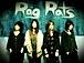 Rag Rats