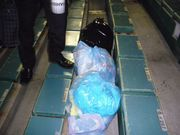 甲子園にゴミ袋を持参