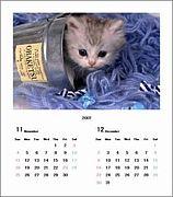 音楽カレンダー