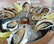 牡蠣とウニ好きな札幌市民