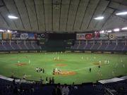 東京六大学理工系野球連盟