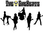 THE SHEBEATS