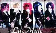 †La'Mule/真×直†