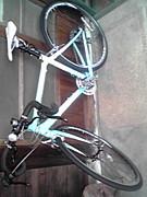 関西学生ロードバイク