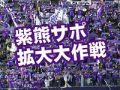 紫熊サポ拡大大作戦