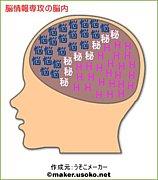 生命体工学研究科 脳情報専攻