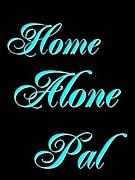 Home Alone Pal