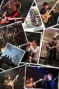 melodeonの世界