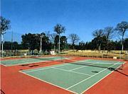 東村山テニス同好会