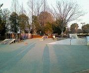 仙元山スケートパーク