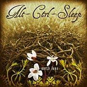 Alt-Ctrl-Sleep