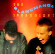 Blancmange (ブラマンジェ)