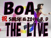 期間限定『BoA THE LIVE』の輪
