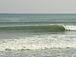 surfers飲み会