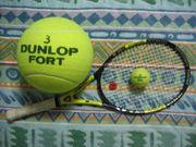 大分舞鶴硬式テニス部