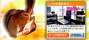 FM MOOV〜神戸より愛を込めて〜