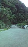 林道犀鶴線