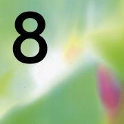 8����