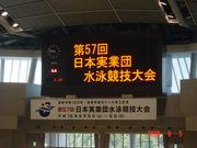 日本実業団水泳競技大会参加者