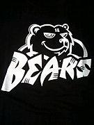肝属BEARS