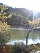 岐阜東濃のラーメン