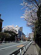 東京藝大' 08入学者  コミュ
