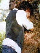まちゃきの木になりたい